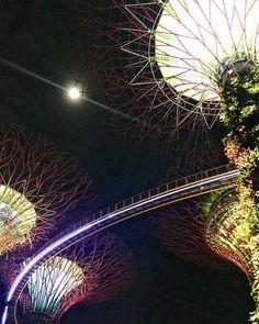 Balance. . . . . . . #night #singapore #gardensbythebay #moon #colourful #dazzles #balance #diagonal #symmetry #travel #tourist #attraction #lookup #nature #urban #city #coast #photography #nodsphotography #art http://tipsrazzi.com/ipost/1517443554010628679/?code=BUPCt9jgoJH