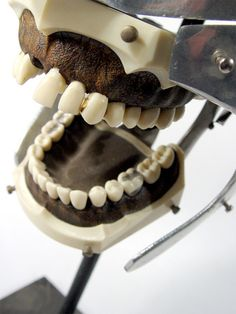 As if going to the dentist wasn't scary enough already, you can now augment your odontophobia with a series of nightmare-inducing dental training devices, antique drills and tooth-related obj… Dental Training, Uncommon Objects, Tooth Fairy, Dentistry, Teeth, Creepy, Antiques, Nook, Ethnic Recipes