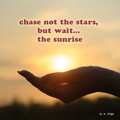chase not the stars,  but wait... the #sunrise   -A. D'Agio #ambition #meditation#micropoem #micropoetry