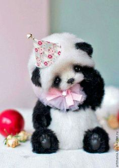 I love panda Baby Animals Super Cute, Cute Little Animals, Cute Funny Animals, Cute Cats, Big Cats, Baby Animals Pictures, Cute Animal Pictures, Fluffy Animals, Felt Animals