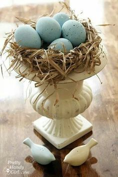 natural and decorative eggs