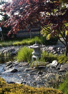 Ogród japoński Pisarzowice, japonska zahrada Pisarzowice. Szkółka krzewów ozdobnych, kwitnących A. Pudełko