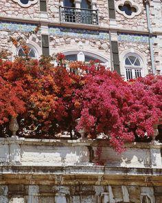 The beautiful buildings of Lisbon