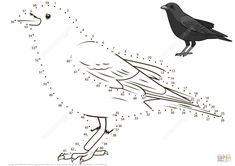 Crow dot to dot from Birds category. Select from 32012 printable crafts of cartoons, nature, animals, Bible and many more. Colouring Pages, Adult Coloring Pages, Coloring Books, 5th Grade Activities, Montessori Activities, Printable Crafts, Free Printables, Dots Game, Bird Theme