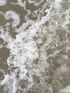 Sullivan's Island Beach is a treasure. Very natural and a quiet haven for the locals. Sullivans Island Beach, The Locals, Waves, Nature, Naturaleza, Off Grid, Natural, Mother Nature, Scenery