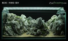 Great AquaScaping by Chinese artists ( artist name is in each picture )