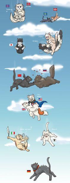Axis Powers: Hetalia>> *grabs tons of pillows* HANG ON KITTIES I'LL SAVE YOU!!!!!!