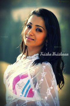 Beautiful Saree, Beautiful Women, Trisha Actress, Trisha Krishnan, South Indian Actress Hot, Actress Pics, Party Wear Sarees, Indian Beauty, Indian Actresses