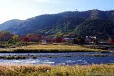 Arashiyama (#Kyoto) is breathtakingly beautiful in autumn.