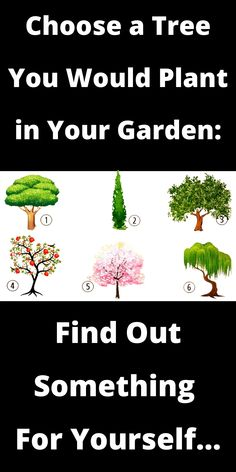 For more information about yourself, just look at the picture and choose the tree that may first attract your attention: Spiritual Psychology, Dream Garden, Krishna, Plants, Plant, Planets