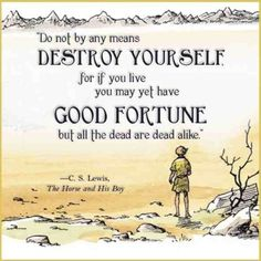"""""""Do not by any means destroy yourself, for if you live you may yet have good fortune but all the dead are dead alike. Lewis, The Horse and His Boy, The Chronicles of Narnia Boy Quotes, Life Quotes, Aslan Quotes, Tolkien Quotes, House Quotes, Dark Quotes, Author Quotes, Lyric Quotes, Tattoo Quotes"""