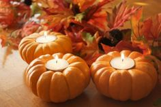 I always do this for halloween and Thanksgiving.Its a wonderful thing to put on the tables.mini pumpkins carved for tea lights Thanksgiving Crafts, Thanksgiving Table, Thanksgiving Decorations, Fall Crafts, Holiday Crafts, Holiday Fun, Holiday Decor, Fall Table, Festive