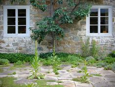 Bunny Mellon: The Weeded Stone Terrace: Do you know, below, what you're looking at? .… #SeattlestrongRockeriesstrongBlog #retainingwall