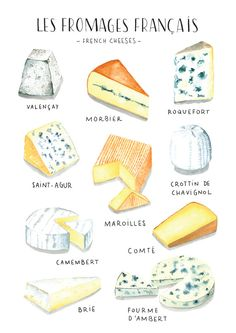 Cool concept - series with cupcakes or other sweets? Watercolor food illustration - French Cheese - Nathalie Ouederni www. Cheese Drawing, Food Drawing, Watercolor Food, Watercolor Illustration, French Illustration, Watercolor Painting, Food Design, Cheese Art, Cheese Food