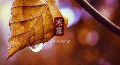 """Cold Dew"": around October 8th of the solar calendar, indicating lower temperature, dew in the air and cold feeling. #Beijing #China"