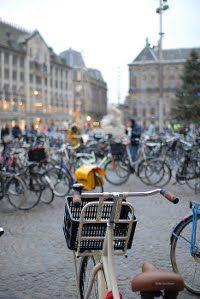 Universo Vivo: Holanda y sus logros sobre bicicleta