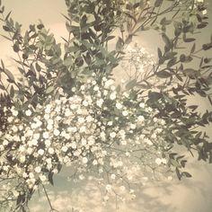 Siivouskukkia  #harsokukka #kukkia #siivouspäivä #flowers #cleaningday #Thursday #torstai