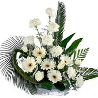 Call for Peace-May your loved ones live in peace this season with this lovely Carnation-Rose white arrangement! Arrangement contains 6 Gerberas with 6 Roses.(Arrangement may vary slightly from the picture). Exotic Flowers, White Flowers, Beautiful Flowers, Send Flowers, Fresh Flowers, White Roses, Carnation Colors, White Carnation, Online Flower Shop