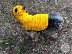 Crochet Seed Stitch, Basic Crochet Stitches, Crochet Basics, Crochet For Beginners, Easy Crochet, Dog Crochet, Ribbed Crochet, Crochet Fall, Beginner Crochet