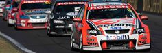 Image result for david reynolds bathurst 1000 2017 David, Cars, Vehicles, Sports, Image, Hs Sports, Autos, Car, Car