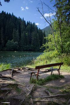 Lacul Rosu by Vlad Marinescu / Turism Romania, Visit Romania, Romania Travel, Red Lake, Forest Photography, Vancouver Island, Places To See, Explore, Tik Tok