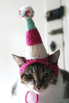 Cats Love Hats! free patterns to knit and crochet – Grandmother's Pattern Book