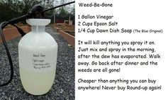 Weed Be Gone  Natural Weed Killer   Ingredients: 1 Gallon Vinegar 2 cups Epson Salts 1/4 cup Dawn dish detergent (Blue original)  Mix and spray.
