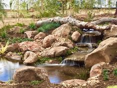 At NatureBuild we specialize in Natural Water features, Ponds, Timber pergolas, decks and bridges, stone and boulder work and landscape construction/design using natural materials. Water Pond, Water Garden, Back Gardens, Small Gardens, Landscape Design, Garden Design, Stone Water Features, Timber Pergola, Garden Fountains