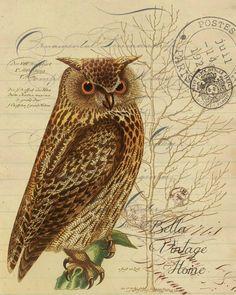 2 Serviettes en papier Animaux Oiseau  Hibou Givre Paper Napkins Winter Owl