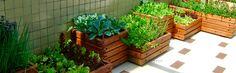 153 Comment Planter, My Secret Garden, Plantar, Green Life, Growing Plants, Planting Succulents, Garden Bridge, Vegetable Garden, Container Gardening
