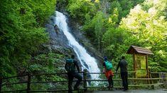 Cascada Lotrisor - Muntele Naratu Hiking Trails, Waterfall, Outdoor, Waterfalls, Park, Cabin, Outdoors, Outdoor Games, The Great Outdoors