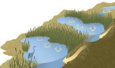 Imagen de http://www.bobwrightillustration.com/sites/default/files/illustration_images/Info_03.jpg.