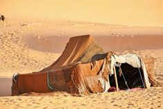 Any of the descendants of the pre-Arab inhabitants of North Africa. The Berbers live in scattered communities across Morocco, Algeria, Tunisia, Libya, Egypt, Mali, Niger, and Mauretania. They speak various...