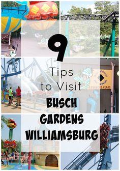 9 Tips for Busch Gardens Williamsburg, VA