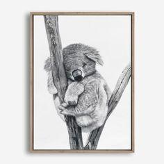 Mirror Artwork, Canvas Artwork, Mdf Frame, Canvas Frame, Wall Art Prints, Framed Prints, Canvas Prints, Square Canvas, Australian Animals