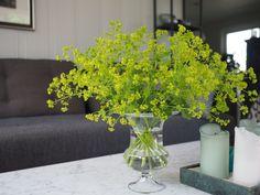 Enkle og grunnleggende tips for luftig blomsterbukett i sommer.