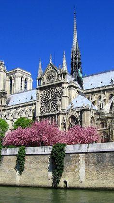 notre-dame de paris, cathedral, paris, france