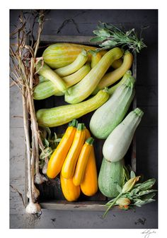 courgettes | super food health motivation inspiration muscle fitness smoothie vegetable vitamins antioxidants health food training style menswear womenswea
