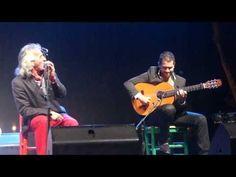 """Capullo de Jerez; Guitarrista Miguel Salado Puyol,Fiesta de la Bulerías """" 10/08/2013 - YouTube"""
