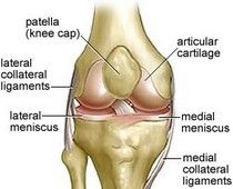 how to strengthen your knees!  @Bry Mcintyre