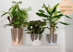 DIY: Paint Dipped Ceramic Pots - Decor Fix