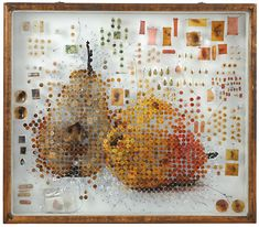 Biographical DNA art by Michael Mapes