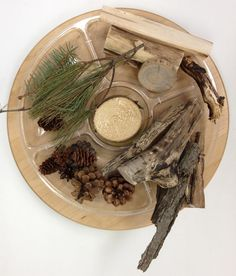 pictures of reggio classrooms - sorting natural materials
