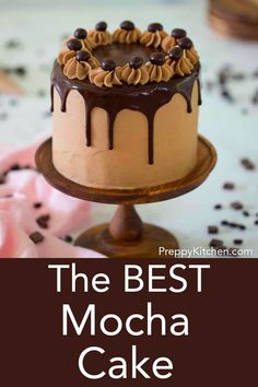 Nov 2019 - This mocha cake is moist, fluffy and packed with chocolate and coffee flavor. Between each layer you'll find a mocha buttercream, chocolate ganache and chopped chocolate covered espresso beans. Chocolate Mocha Cake, Chocolate Covered Espresso Beans, Homemade Chocolate, Cupcake Recipes, Baking Recipes, Cupcake Cakes, Cupcakes, Sweet Desserts, Delicious Desserts