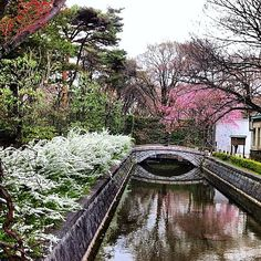 Nice photo in Japan ^^