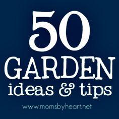 50 Gardening Ideas & Tips     http://diyhomesweethome.com/50-gardening-ideas-tips/