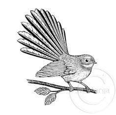 1237 G - Fantail on Branch Hawaiian Tribal Tattoos, Samoan Tribal Tattoos, Maori Tattoos, Borneo Tattoos, Cute Animal Drawings, Bird Drawings, Maori Symbols, New Zealand Tattoo, Cross Tattoo For Men