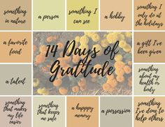 We need gratitude more than ever  When we're feeling discouraged, alone, anxious, or angry, it's hard to be grateful.  We know we're supposed to feel grateful. It's Thanksgiving-time after all. But you may be having a hard time tapping into gratitude right now.  Our country is in turmoil, leaving us with a heaviness that's hard to shake. Or maybe you're overwhelmed with personal problems.