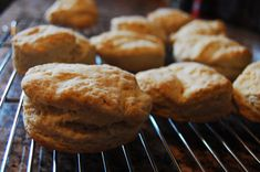 BISCUITS 101 Elena Rosemond-Hoerr. -  The key to biscuits, as with any dough, is getting the fat to flour ratio right.  All of the ingredients are important, but you won't get the flaky, delicious layers unless you treat the butter just right!!!