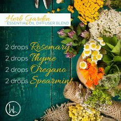 This diffuser blend will make your home smell like you have a fresh herb garden in your kitchen! Rosemary helps reduce nervous tension and occasional fatigue. Thyme produces a warm floral scent. Oregano supports respiratory function, but due to its high phenol content do not diffuse more than 2 drops at a time. Spearmint's sweet refreshing aroma is cleansing and uplifting, making it ideal to evoke a sense of focus and positive mood!  www.hayleyhobson.com